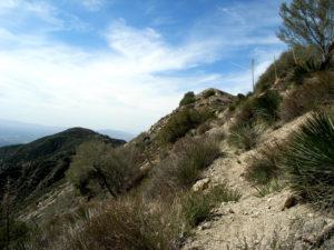 Mount Lukens via Haines Canyon