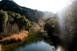 Lower Malibu Creek Loop