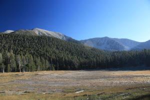 San Gorgonio Mountain via South Fork Trail