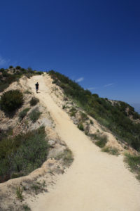 Mount Hollywood via Hogback Trail