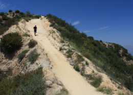 view of hiker climbing the steep hogback trail in Griffith Park