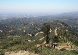 view of mount Hollywood trail net