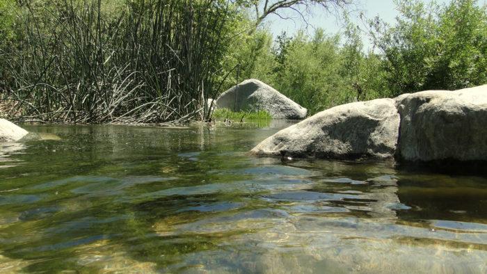 santa-margarita-river-4
