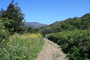 Creamery Meadow Loop