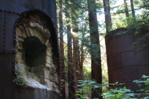 Limekiln and Hare Creek Trails