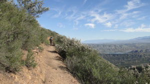 Dripping Springs Trail and the Agua Tibia Loop