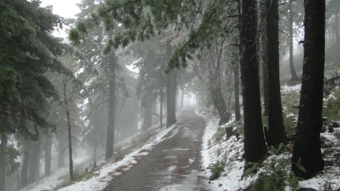 cuyamaca-peak-4