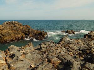 Sacred Cove