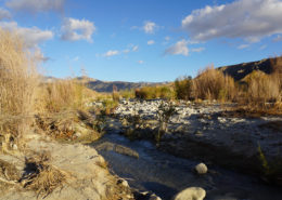 Whitewater Preserve in California