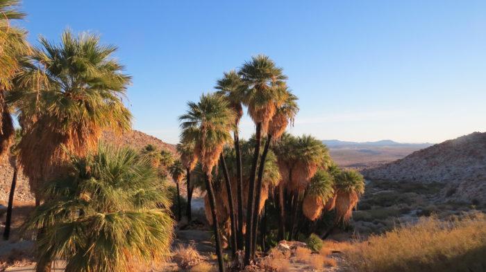 mountain-palm-springs-7