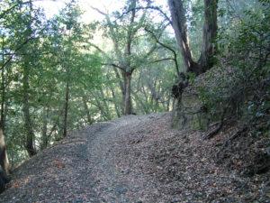 Trabuco Canyon / Horsethief Loop