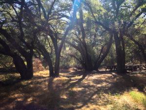 Rocky Oaks Park