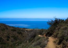 The Pacific Ocean from the Nicholas Flat Trail in the Santa Monica Mountains