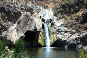 Paradise Falls and Wildwood Regional Park