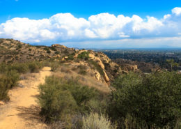 View from Santa Susana Pass State Park