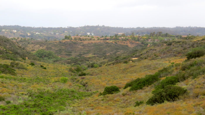 Gonzales Canyon 1