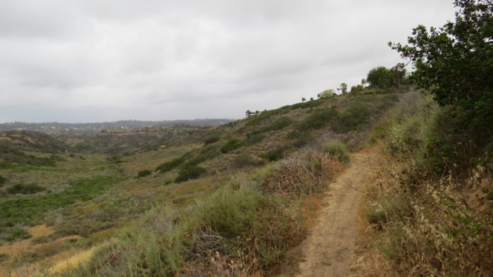 Gonzales Canyon 2