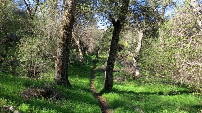Secret Canyon Trail 1