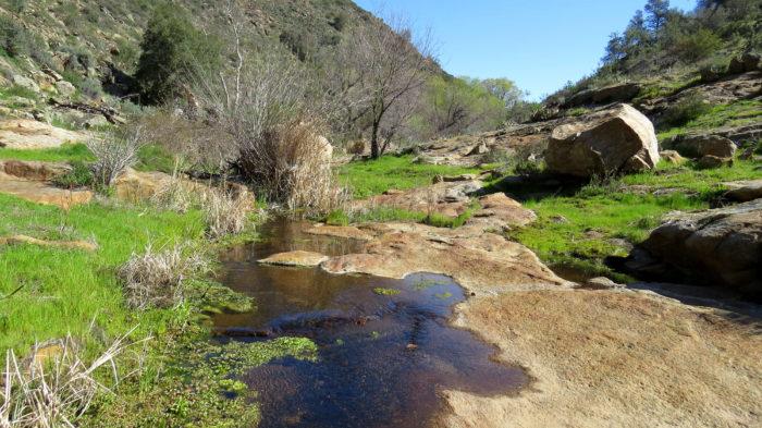 Secret Canyon Trail 4