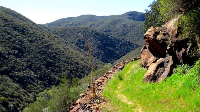 Secret Canyon Trail 5