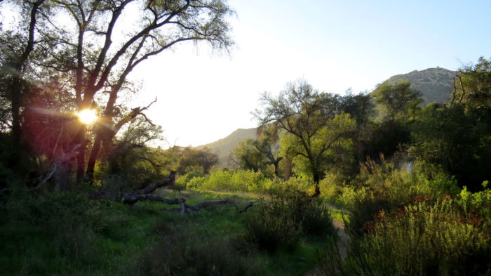 Secret Canyon Trail 18