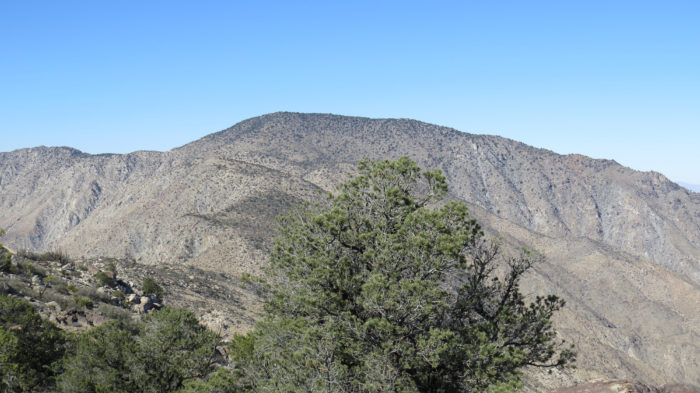 Rabbit Peak 14