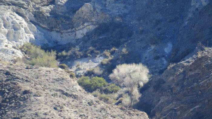 Rabbit Peak 3