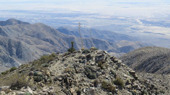 Rabbit Peak 8
