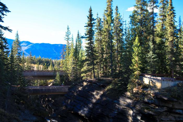 athabasca falls jasper-11