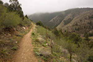 Mayhem Gulch Trail