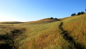 Punta Mesa and Trans-Preserve Loop
