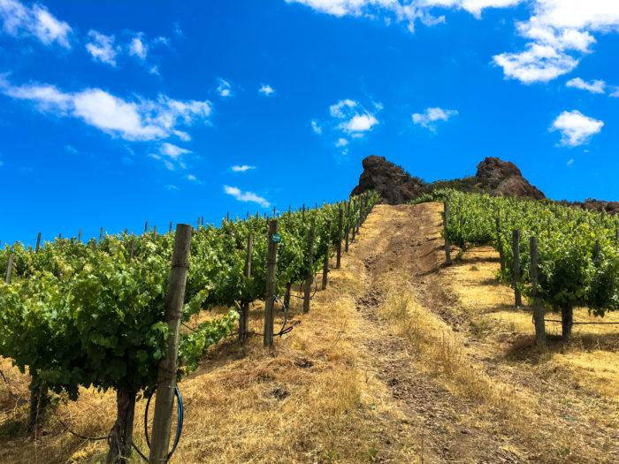 malibu wine hikes-2