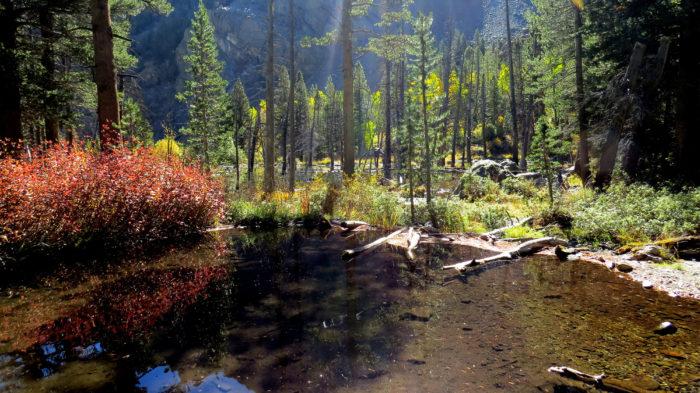 Lundy Canyon (7)