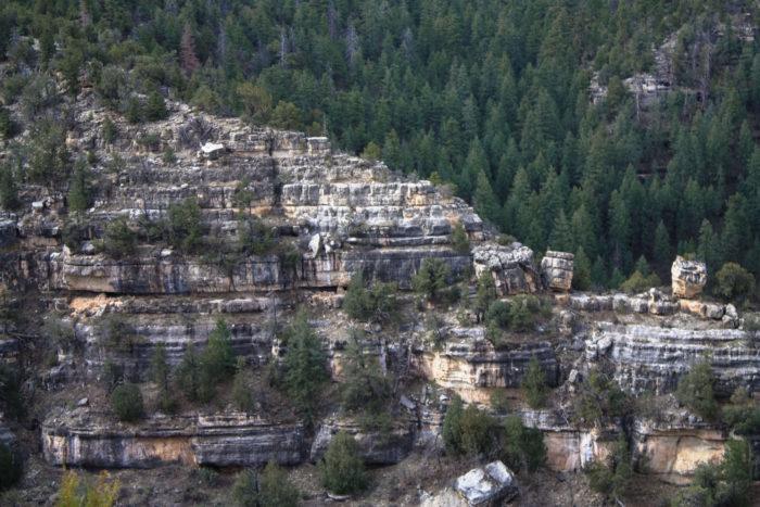 walnut canyon national monument-6