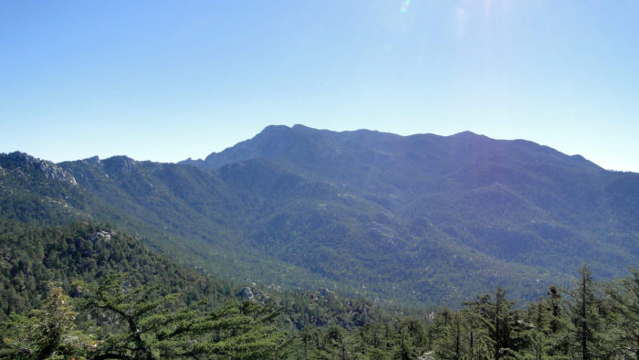 black-mountain-lookout-15