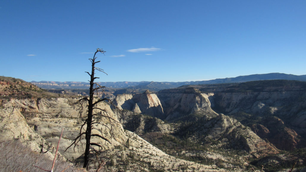 west-rim-and-telephone-canyon-14