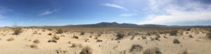 Pinto Basin Sand Dunes