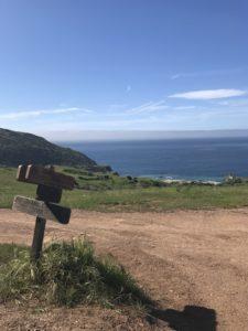 Trans-Catalina Trail (TCT)