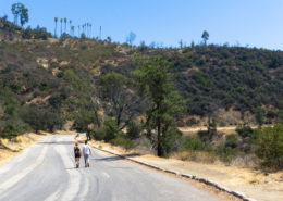 hikers on the three mile trail in Griffith Park