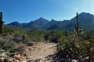Gateway Loop Trail