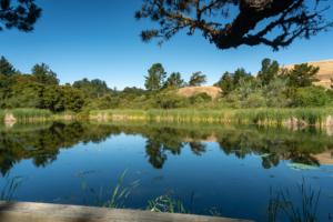 Alpine Pond to Horseshoe Lake